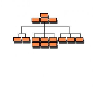 bdf-organizational-axis-1a