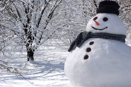 AaronHoos_BusinessWriterandStrategist_Snowman